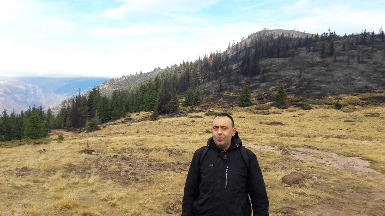 Pirotski kraj
